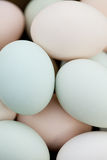 Organic Eggs Background Royalty Free Stock Photography