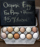 Organic eggs. Organic chicken eggs for sale at the Dubuque Iowa farmers market Royalty Free Stock Photography