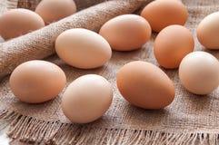 Organic eggs Royalty Free Stock Photography