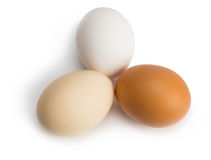 Organic eggs of different colors Royalty Free Stock Images