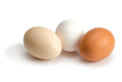Organic eggs of different colors Stock Photography