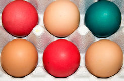 Organic Eggs: Easter Colors Royalty Free Stock Photo