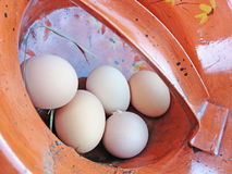 Organic Eggs Stock Images