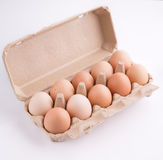 Organic eggs and packing Stock Image