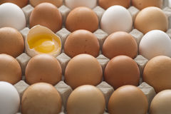 Organic Eggs. White and brown fresh organic eggs royalty free stock photo