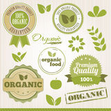 Organic element Royalty Free Stock Photography