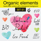 Organic elements and raw food diet designs Royalty Free Stock Photos