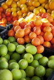 Organic tangerines, limes and lemons Royalty Free Stock Photography