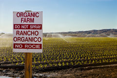 Organic Farm Royalty Free Stock Images