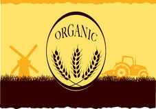 Organic farm. A illustration of organic farm graphic Stock Photo