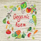 Organic farm banner with frame Royalty Free Stock Photos