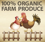 Organic farm Royalty Free Stock Photography