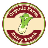 Organic farm and dairy fresh logo with a cabbage Royalty Free Stock Photography