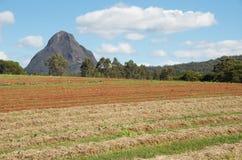 Organic farm fields royalty free stock photography