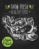 Organic farm food poster healthy drawn chalkboard. Organic product background on chalkboard farm food poster on blackboard healthy food template hand drawn Stock Image