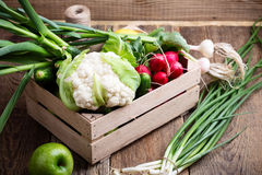 Organic  farm. Fresh vegetables in wooden crate Stock Image