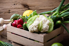 Organic  farm. Fresh vegetables in wooden crate Royalty Free Stock Images