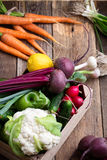 Organic  farm. Fresh vegetables in wooden crate Stock Photography