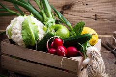 Organic  farm. Fresh vegetables in wooden crate Stock Photos