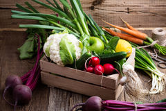 Organic  farm. Fresh vegetables in wooden crate Royalty Free Stock Image