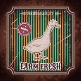 Organic farm fresh. Vintage label with duck. Royalty Free Stock Images