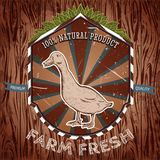 Organic farm fresh. Vintage label with duck. Stock Photos