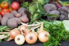 Organic farm ingredient, fresh vegetarian market food.  stock photo