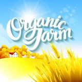 Organic Farm Logo. With autumn grass and tree EPS 10 Royalty Free Stock Images