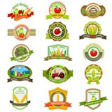 Organic Farm Product Tag and label Royalty Free Stock Image
