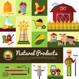Organic Farm Products Flat Design Royalty Free Stock Images