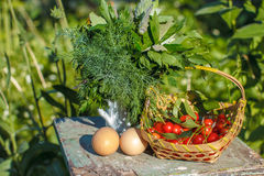 Organic farm products Stock Image
