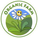 Organic farm signboard, cheerful white flower marguerite with smiley face on green meadow in circle shape, emblem for natural prod Royalty Free Stock Photo