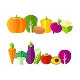 Organic farm vegetables illustration in flat style Stock Photos