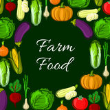 Organic farm vegetables vector poster Royalty Free Stock Image