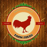 Organic farm vintage label with chicken cock. Royalty Free Stock Photo