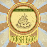 Organic farm vintage label with chicken and eggs. Stock Photography