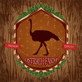 Organic farm vintage label with ostrich on the grunge background. Stock Photo