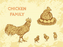 Organic farm vintage poster with family chicken: cock, hen with chickens. Royalty Free Stock Photo