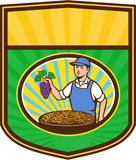 Organic Farmer Boy Grapes Raisins Crest Retro Royalty Free Stock Photos