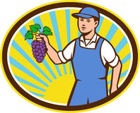 Organic Farmer Boy Holding Grapes Oval Retro Stock Photos