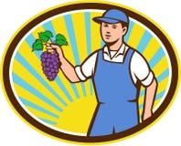 Organic Farmer Boy Holding Grapes Oval Retro Stock Photos
