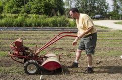 Organic Farmer Cultivating Between Garden Rows Stock Image