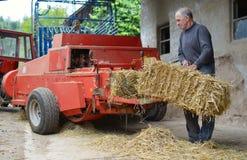 Organic farmer making/stack bales Royalty Free Stock Photography