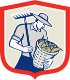 Organic Farmer Rake Harvest Basket Retro Royalty Free Stock Photo