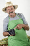 Organic farmer with some red grapes in his hand Royalty Free Stock Images