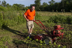 Organic Farmer Tilling Between Garden Rows Stock Photo