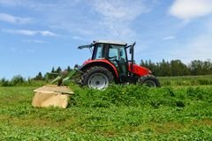 Organic farmer in tractor mowing clover field with rotary cutter Stock Image