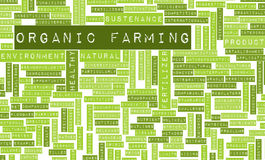 Organic Farming Royalty Free Stock Photos