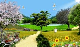 Organic Farming Stock Images