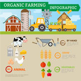 Organic farming and industrial food,Vegetables,fruits,mik,egg an. D rice product infographic. Vector illustration cartoon concept Stock Images